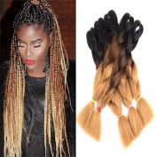 "Ombre Jumbo Braid Hair Extensions 24"" 5Pcs/Lot 100g/Pc High Temperature Kanekalon Synthetic Fibre for Twist Braiding Hair"