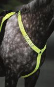 Shires Equi-flector Breastplate