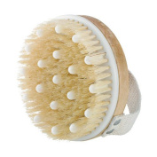 Dry / Wet Bath Body Brush by Pevor Natural Boar's Bristle Shower Brush Massage for Better Exfoliation - Remove Dead Skin Cells While Reducing Cellulite & Toxins