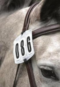Shires Competition Numbers