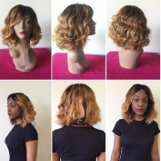 Short Ombre Human Hair Wigs Middle Part Short Lace Front Human Hair Bob Wigs with Baby Hair Brazilian Wavy Hair 1b/27 Colour Ombre Full Lace Wig