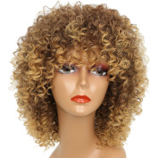 Synthetic Curly Wigs Heat Resistant Fibre Curly Wigs for Black Women Short Afro Wigs