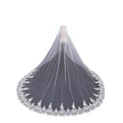 Wedding Bridal Veil Elegant Lace Embroidery Applique Veil