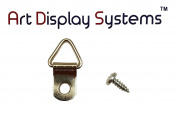 ADS 1 Hole Triangle ZP D-Ring Hanger with 6 3/8 Screws – Pro Quality – 100 Pack by ART DISPLAY SYSTEMS