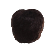 Zhhlaixing Elegant Women's Fashion Party Synthetic Wigs - Short Hair Wigs RM-ZF-2003-4#