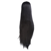 Zhhlaixing Elegant Women's Fashion Party Synthetic Wigs - Lace Long Hair Wigs RM-Q-002