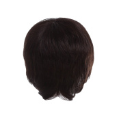 Zhhlaixing Elegant Women's Fashion Party Synthetic Wigs - Short Hair Wigs RM-ZF-053J2-2#