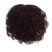Zhhlaixing Elegant Women's Fashion Party Synthetic Wigs - Short Curly Wigs RM-ZF-2011-2/33