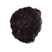 Zhhlaixing Elegant Women's Fashion Party Synthetic Wigs - Short Curly Wigs RM3523
