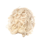 Zhhlaixing Elegant Women's Fashion Party Synthetic Wigs - Short Curly Wigs RM3526