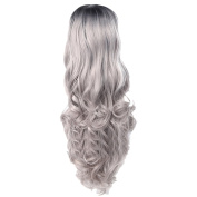 Zhhlaixing Elegant Women's Fashion Party Synthetic Wigs - Lace Long Curly Wigs RM-Q-001