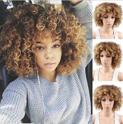 Royalvirgin Short Afro Kinky Curly Wig Synthetic hair Afro Wigs With Ombre Black and Brown Mix Blonde Wigs For Black Women