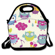 Cute Owl Lunch Bag Box Travel Outdoor Picnic Lunchboxes Lunch Tote Handbag For Kids And Adults