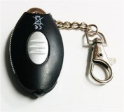 Pocket Size Keychain Keyring Ultrabright Led - Car Keys Handbag Mini Torch Light