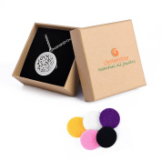 Clementine Essential Oil Jewellery Diffuser Aromatherapy Necklace Hypoallergenic 316L Surgical Grade Stainless Steel 60cm Chain