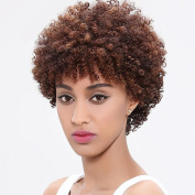 Sai Shang Hair Short Kinky Curly Human Hair Wig Cheep Female Afro Kinky Curly Short Wigs for Black Women Heat Resistant African Hair Wigs