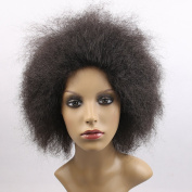 100g/pcs Hair Synthetic Short Kinky Curly Afro Wig Fluffy Wigs for Beauty Women High Temperature Fibre (Natural Black