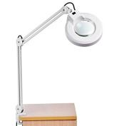 Garain 8X Desk Table Clamp Mount Swing Arm Rolling Adjustable Magnifier Lamp Light Magnifying Glass Len 110V