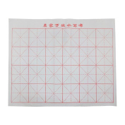 Pink-day Reusable Magic Cloth Chinese Practise Calligraphy Brush Water Writing Painting