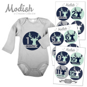 12 Monthly Baby Stickers, Boy, Deer, Antlers, Baby Belly Stickers, Baby Month Stickers, First Year Stickers Months 1-12, Chevron, Blue, Navy, Navy Blue, Mint, Grey, Grey, Woodland, Baby Boy