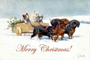 c1900~K. Feiertag~Christmas Dachshund Dogs Carry Cart with Kitty Cats~6 pack NEW Matte Vintage Picture Large Blank Note Cards with Envelopes