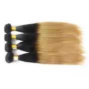 Brazilian Human Hair Weaves Straight 4 Bundles Ombre 2 Tone Colour T1B/27 Remy Human Hair Extensions No Shedding