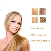 Blonde Human Hair Extension Clip On #27/613 Mixed Colour,120g 8 Pcs 18 Clips in Double Weft