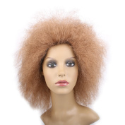100g/pcs Hair Synthetic Short Kinky Curly Afro Wig Fluffy Wigs for Beauty Women High Temperature Fibre (Light Brown