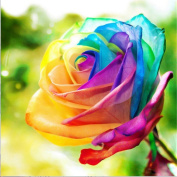 TianMai Hot New DIY 5D Diamond Painting Kit Crystals Diamond Embroidery Rhinestone Painting Pasted Paint By Number Kits Stitch Craft Kit Home Decor Wall Sticker - Colourful Rose Flower, 30x30cm