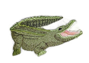 Nature's Bounty Beautiful Custom Crocodile Portraits[ Crocodile] Embroidered Iron On/Sew patch [9.8cm 5.5cm ]Made in USA]