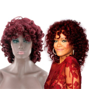 OYSRONG Women's Medium Wavy Lace Front Afro Wig
