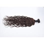 ChisonHair Brazilian Virgin Hair Water wave 1 Bundles/lot Weight(100g+/-5g)/Bundle Grade 8A Unprocessed Virgin Human Hair Weave Weft #2 Colour Tangle-free