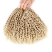 BeautyGrace Marlybob Braiding Crochet Hair 3 Bundles/Pack Ombre Synthetic Hair Extension