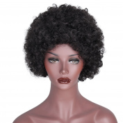 AISI HAIR Natural Afro Wigs Synthetic Black Wigs Short Full Curly Wigs for Black Womens african american wigs Heat Resistant Wig