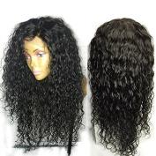 Evlynn Hair Full Lace Human Hair Wigs for Black Women Natural Wave Hair Brazilian Virgin Hair Wigs 250%Density Lace Front Human Hair Wigs with Baby Hair
