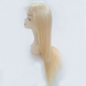 613 Blonde Human Hair Wigs Lace Front Wigs 130% Density Silky Straight with Baby Hair 100% Brazilian Virgin Human Hair 25cm