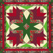 Quilt Kit Christmas Poinsettia Stars/Pre Cut Ready To Sew/EXPED SHIP
