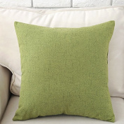 Baozengry Pillow Sofa Bed Solid Mianma Car Cushion Domestic Back Office Waist Waist Pillow Nap Pillow,30*50Cm (Pillowcase Inner Core),Bz-Cs-02