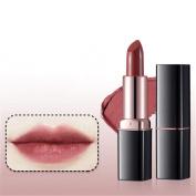 Makeup Lipticks Fashion Women Beauty High Gloss Lip Balm Long Lasting by Molie