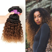 Soft Feel Hair Ombre Peruvian Hair Bundles 2 Tone Peruvian Ombre Curly Human Hair Weaves 1B/30 Peruvian Curly Ombre Hair Extensions