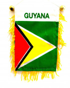 Guyana Mini flag for car windows rearview mirror