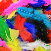 300Pcs Decor Feathers,Colourful Feathers for DIY Craft Wedding Home Party Decorations