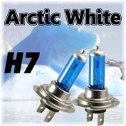 Xenon Arctic White Bulbs H7 To Fit Subaru Legacy 2000 - 2003