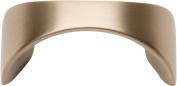 Atlas Homewares A848-CM Sleek Collection Champagne 4.1cm Knob