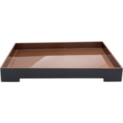 """20.5"""" Royal Blue and Tan Brown Modern Style Tray Decorative Accent"""