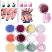 DWD 12 Colour Nail Art Gradual Shimmering Sequins Powder