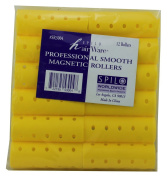 Professional Smooth Magnetic Rollers