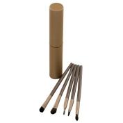 5PCS Eye Brush Set Beauty Tools with Portable Aluminium Tube, Concealer Brush, Smoke Brush, Eyeshadow Brush, etc.