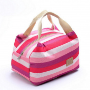 Vibola Canvas Picnic Insulated Food Storage Zipper Box Tote Bento Pouch Lunch Bag Food Storage Bag