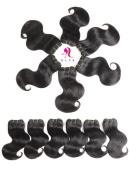 HLSK Unprocessed Brazilian Body Wave Virgin Hair Bundles, 6 Bundle, Brazilian Remy Human Hair Weave Hair Extensions Natural Colour, 50g/pc